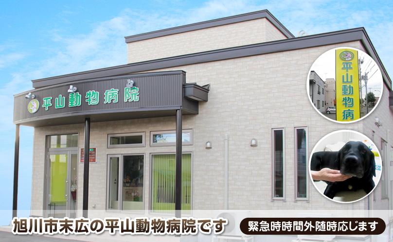 夜間対応の救急動物病院一覧|北海道・24時間 | 和 …